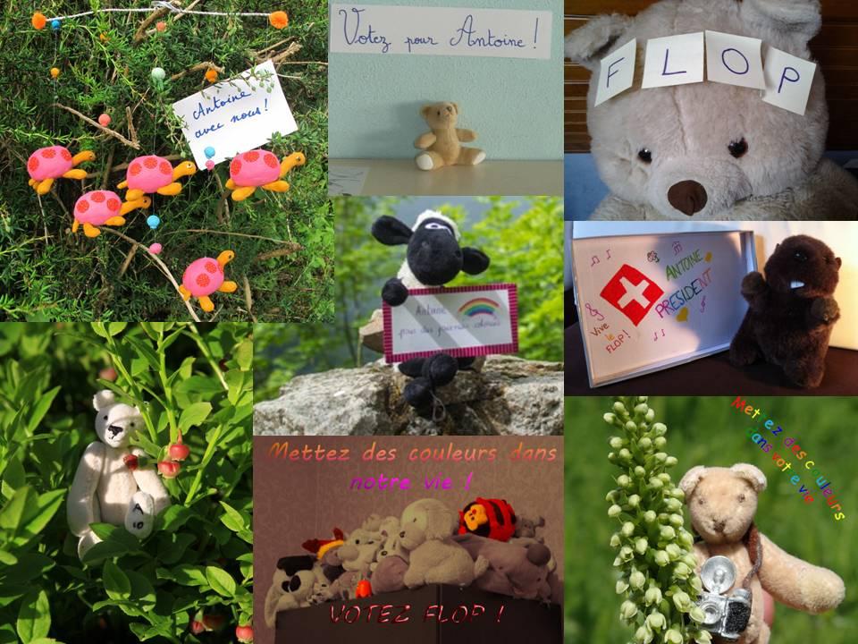 http://spiderphat.free.fr/Antoine/Crozet/Campagne%20(960x720).jpg