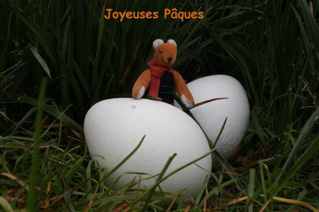 http://spiderphat.free.fr/Antoine/Crozet/Oeufs_1.jpg