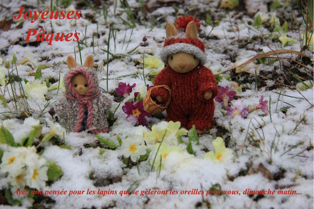 http://spiderphat.free.fr/fotoblog/2013/Lapin%20de%20P%C3%A2ques%202.jpg